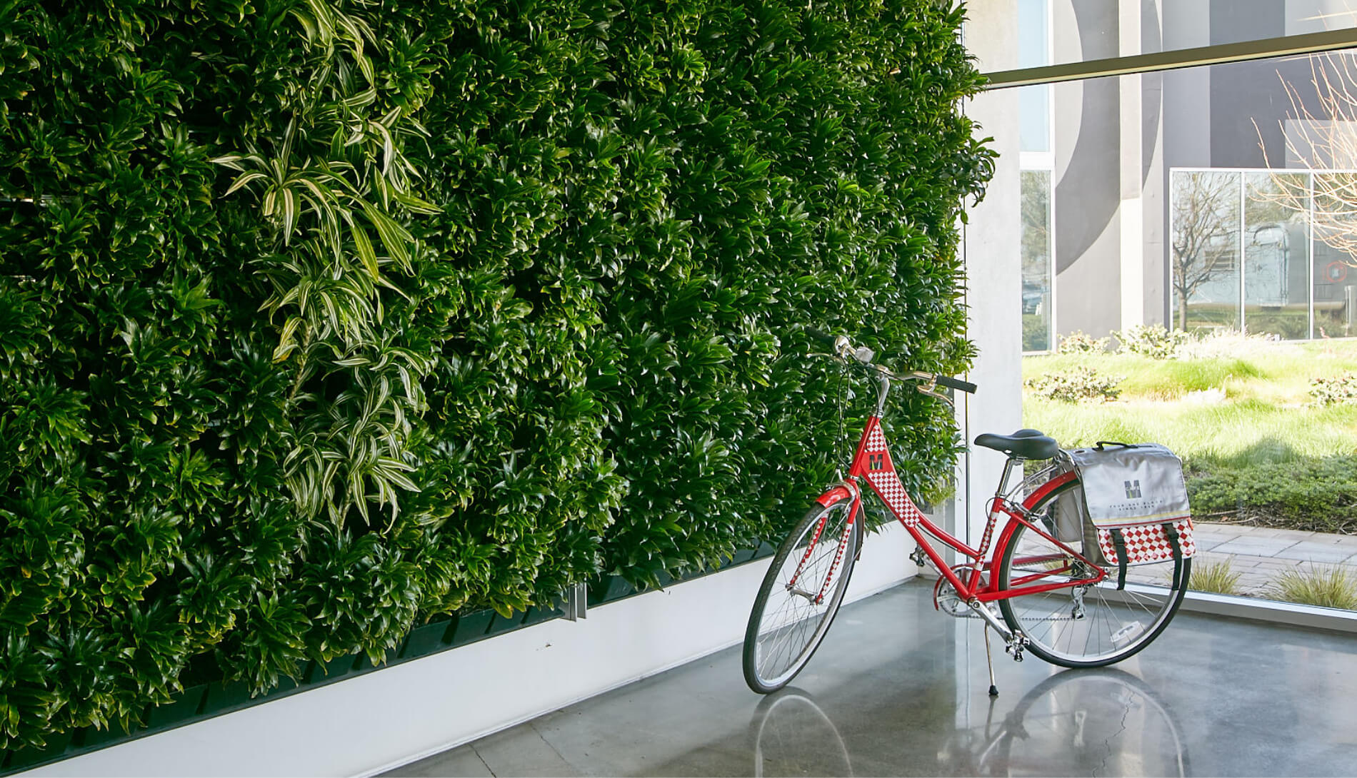 Green plant wall inside office with a bicycle parked on floor